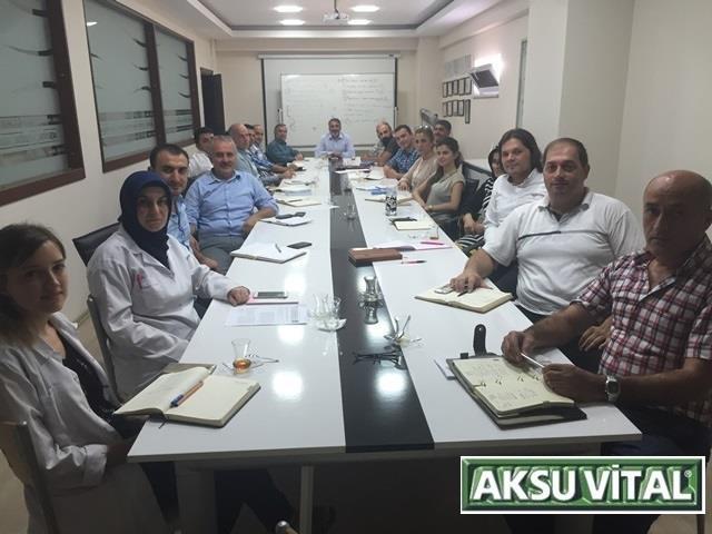 14 Ağustos 2015 - Aksuvital - SWOT Analizi Çalışması